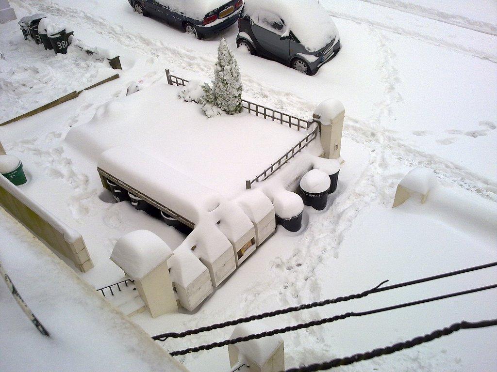Snow - 02-12-2010