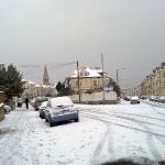 Snow - 01-12-2010