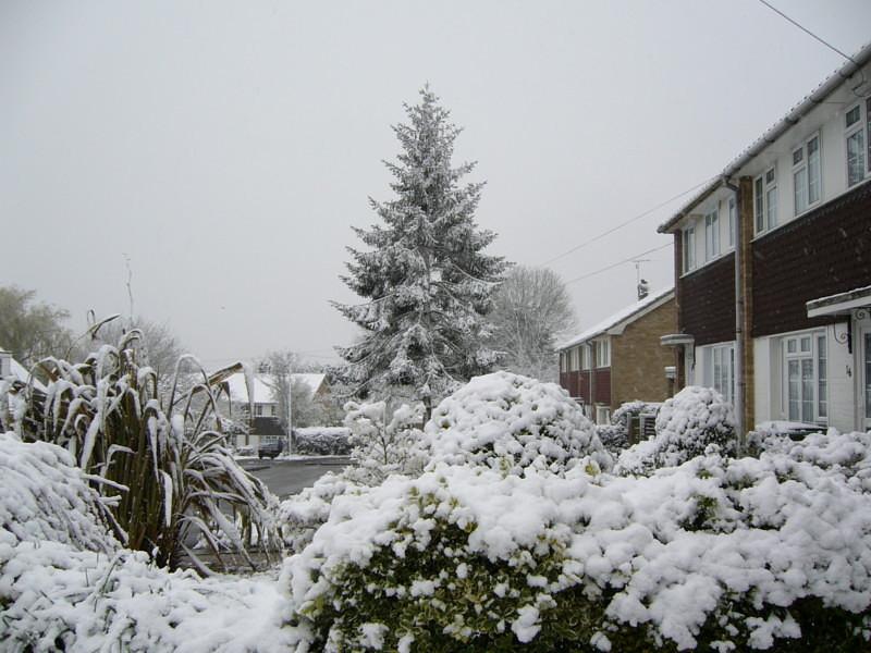 snow06apr08_10