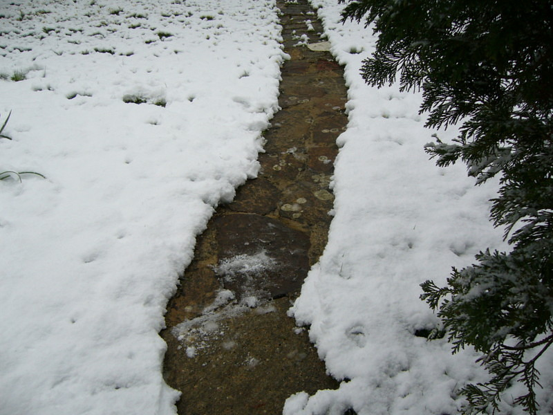 snow06apr08_16