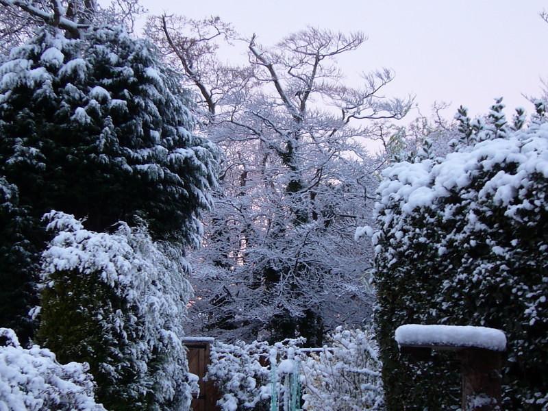 snow06apr08_51