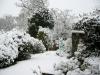 snow06apr08_01