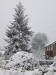 snow06apr08_09