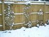 snow06apr08_20