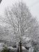 snow06apr08_31