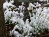 snow06apr08_42