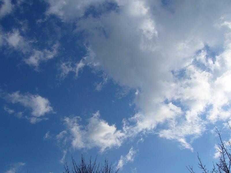 2009-03-29