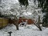 snow06apr08_19